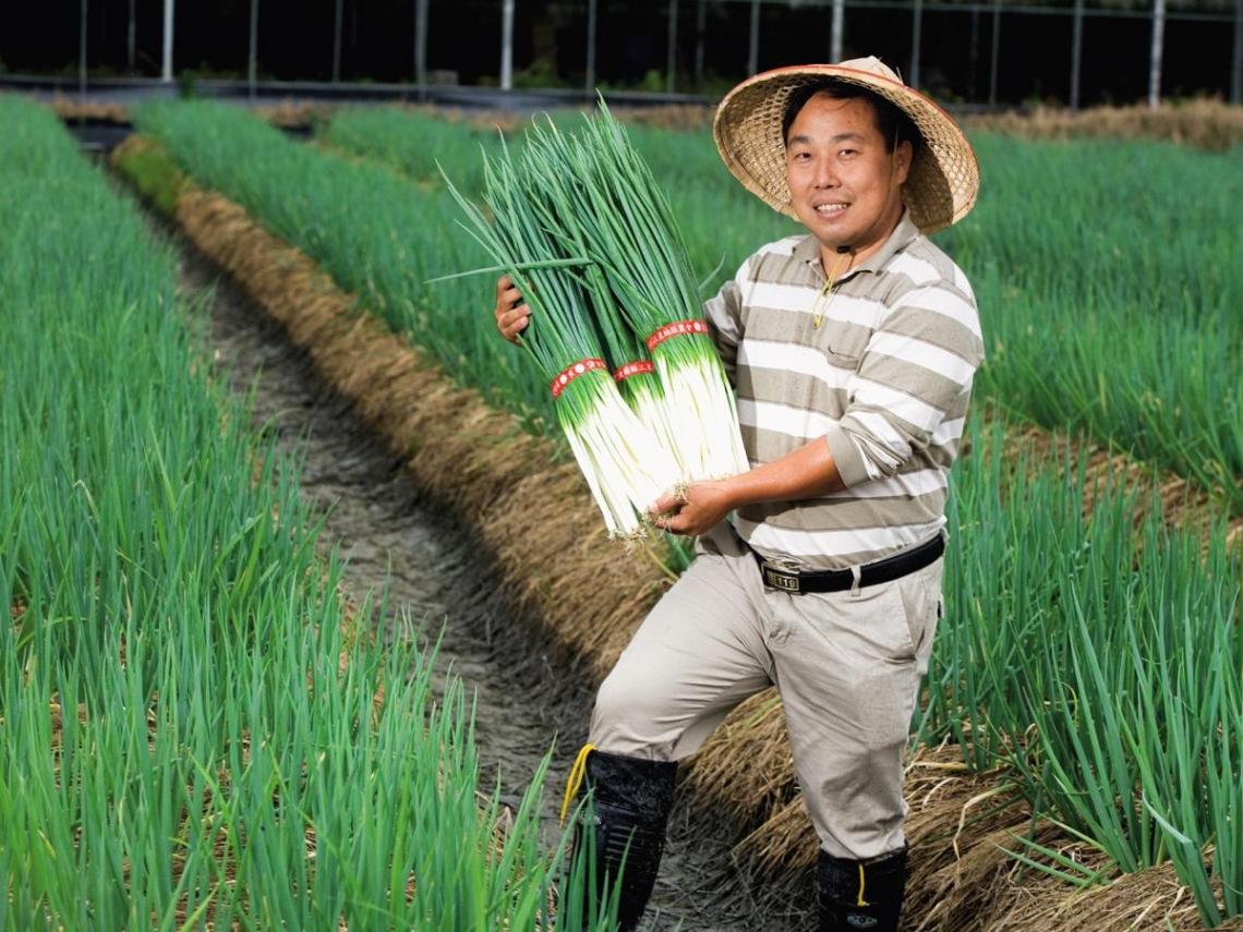 「蔥王子」李建鴻用體驗營模式躍升快樂富農
