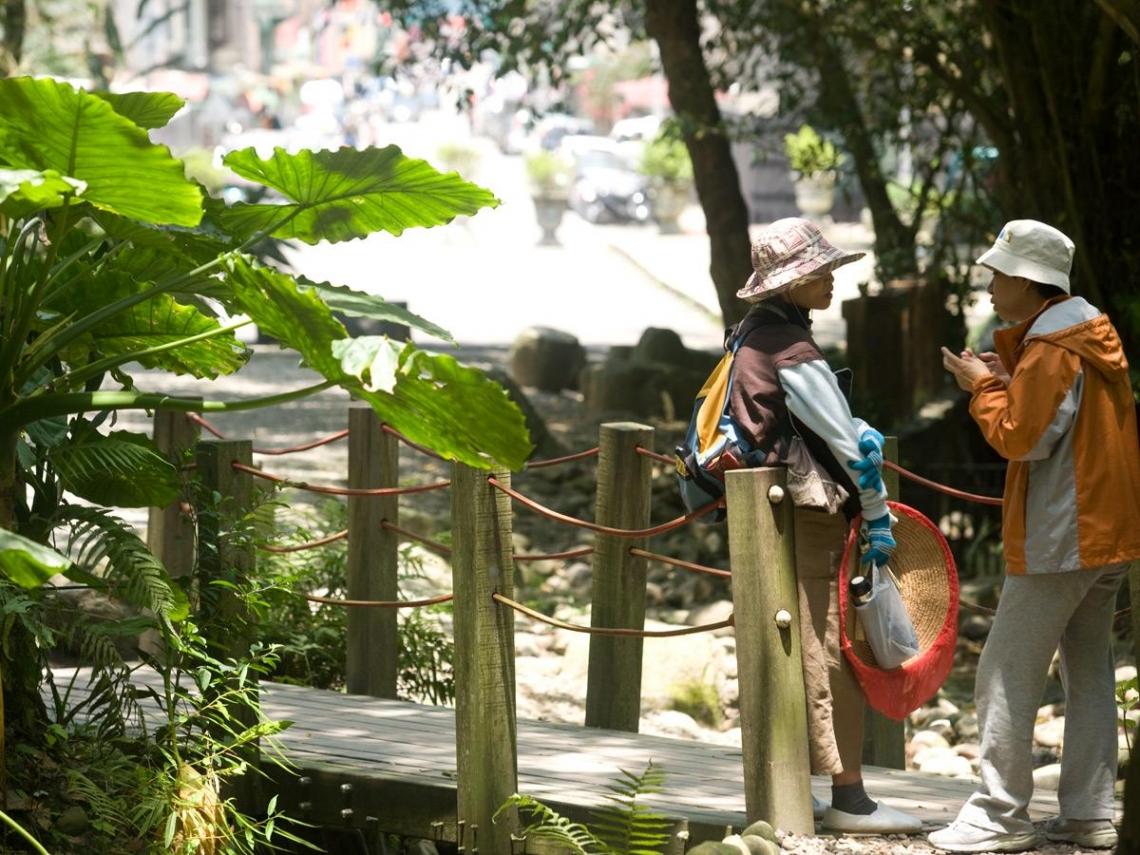 富陽公園  都市裡的生態叢林