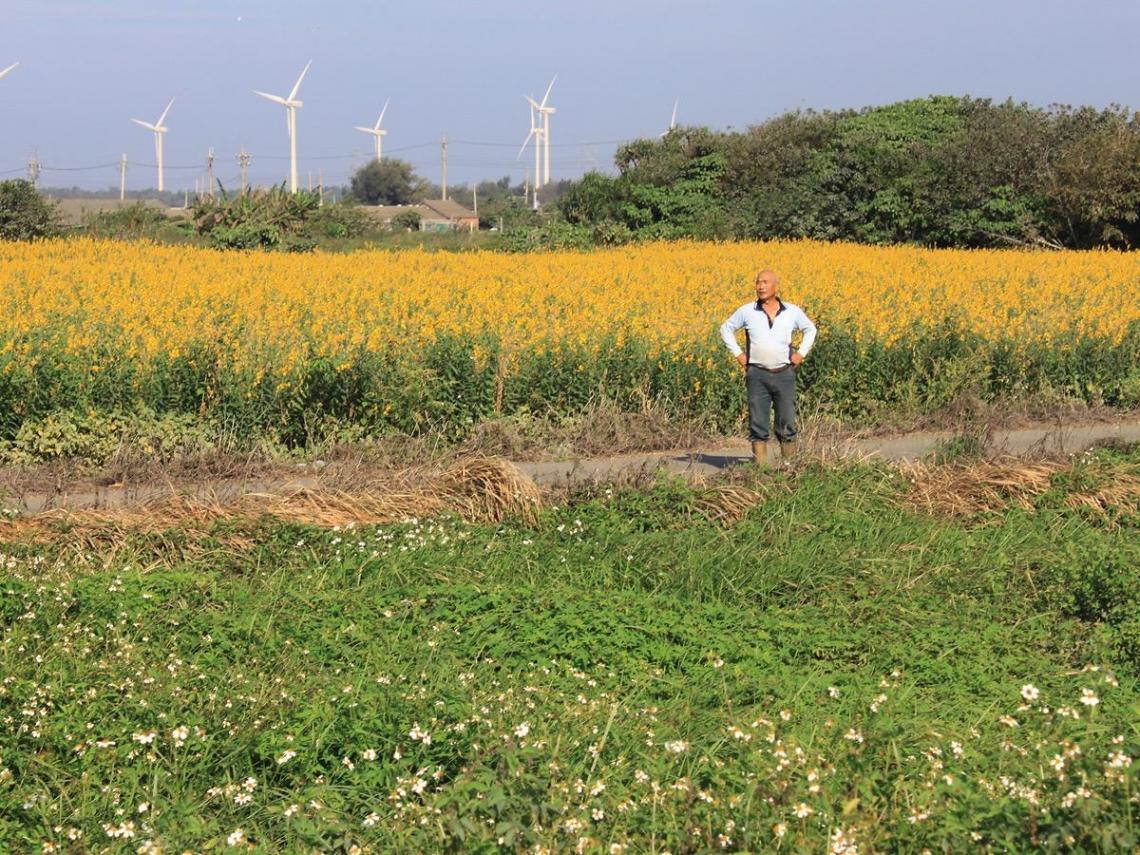 農地休耕補貼  肥到「養地」大戶?