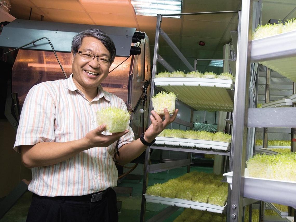 紅柿子「蔬菜工廠」燃起台灣農業生機