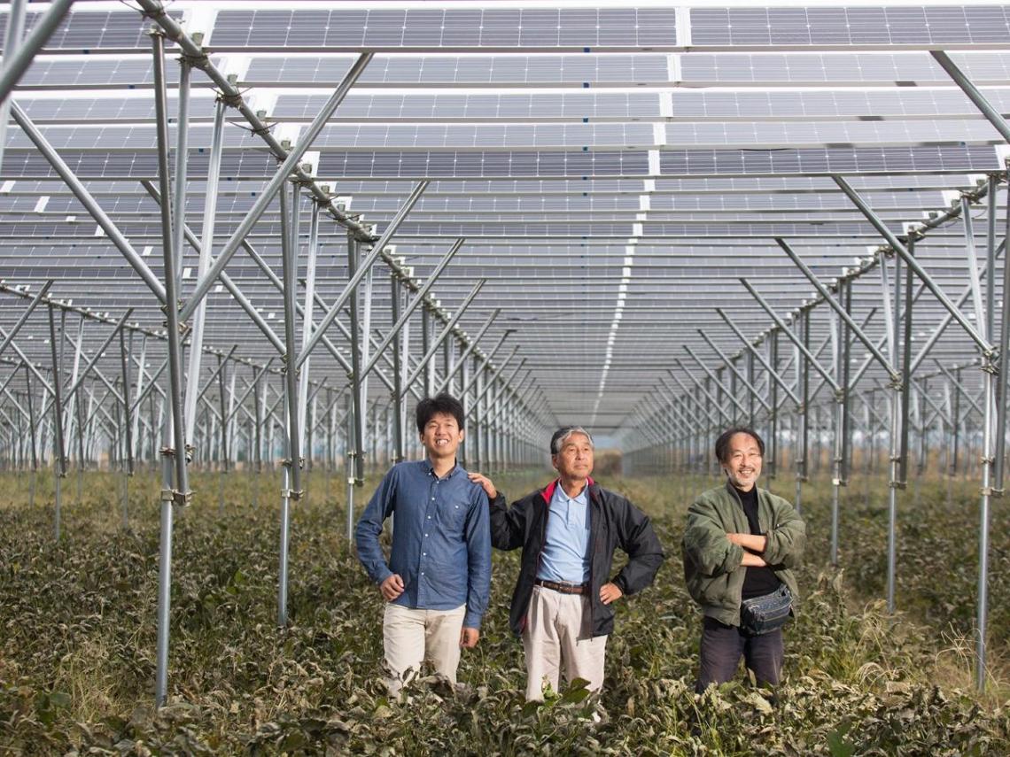 從核災區變綠能大國!看日本如何向天要電?