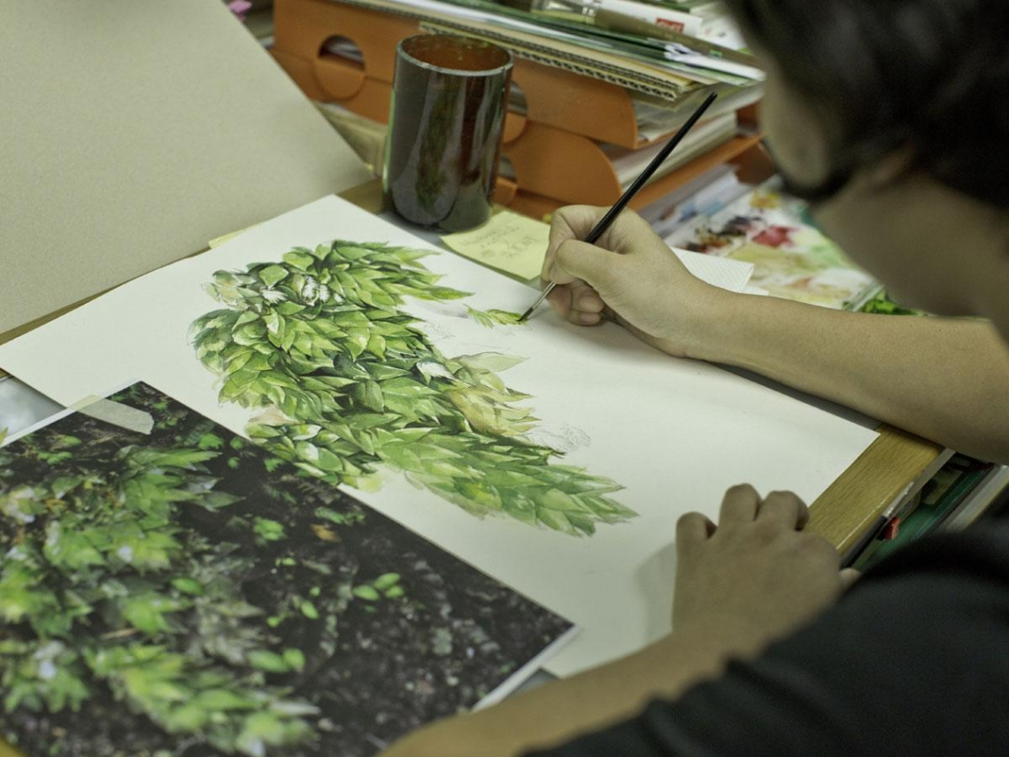 科學繪圖員 水彩細畫苔蘚風情