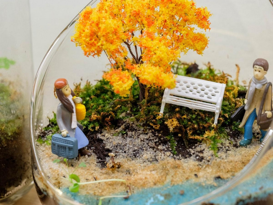 跟著賽車手  玩苔蘚微景觀