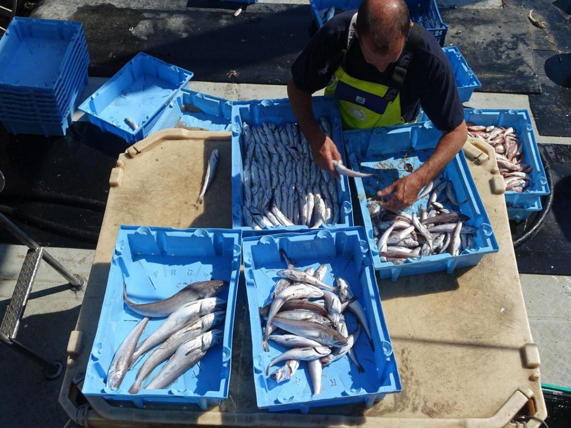 海鮮餐廳與魚市場  旅遊書不知道的緩慢旅行