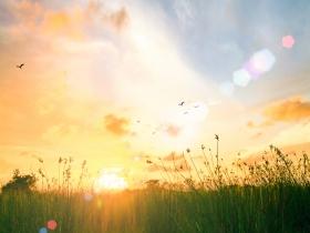 一名癌症病患的告白:罹癌後的人生,更要發現生活點滴的美好
