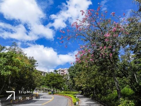 軍艦岩親山步道:歸零,擁抱自然的療癒之旅