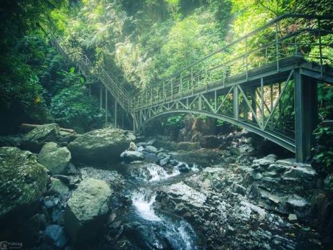 美不勝收!過年走春遊步道,讓你看見超美台灣