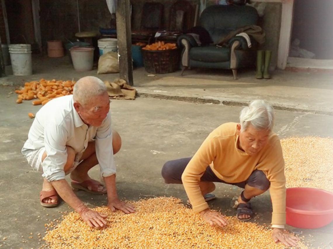夫妻情深!帶阿嬤曬玉米、養土雞,阿公貼心照顧失智妻