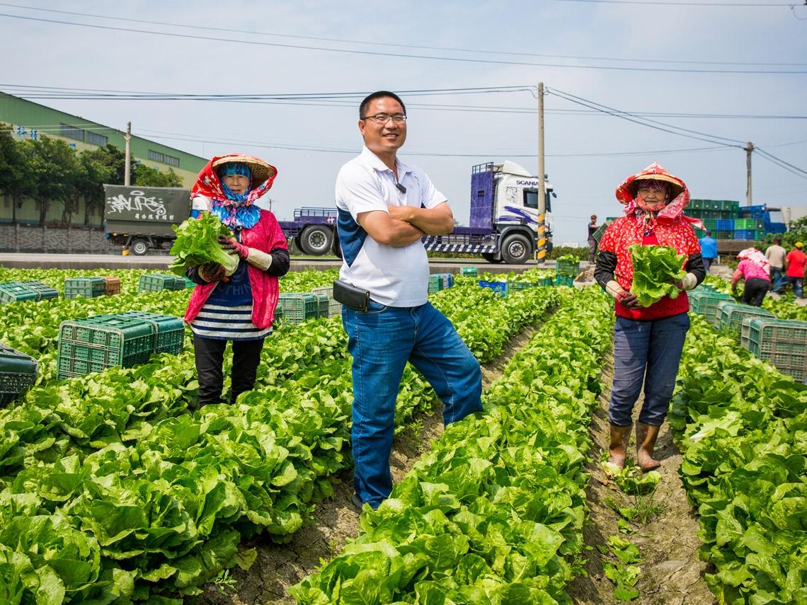 一年補助100億  首長都在賣水果  為何還是救不了台灣農業?