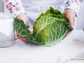 補充葉黃素:除了吃菠菜,護眼第一名的超級食物其實是「羽衣甘藍菜」