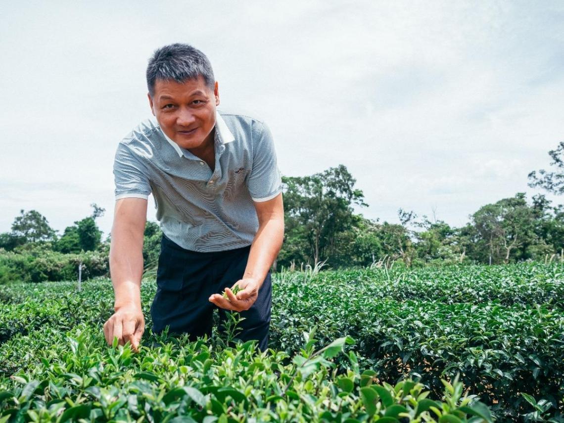 黃璟舞將茶產業多角度發展 創造更高價值