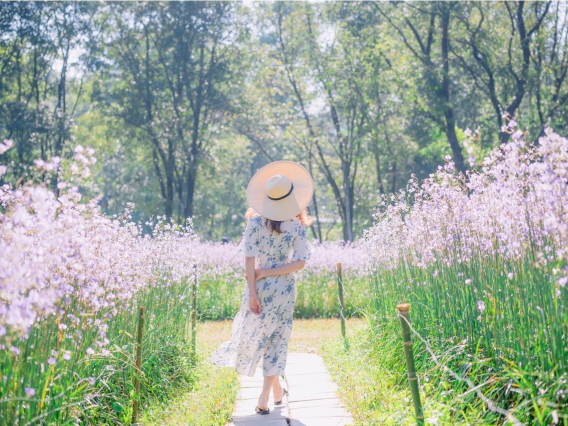 活到100歲,真的會比較快樂嗎?樹木希林:幸福要靠自己去發覺,順著年紀而活更美好