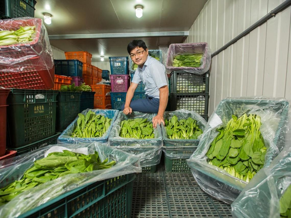 甩掉米蟲標籤!公務員推有機營養午餐 新北市630所學校受惠、農友還可放寒暑假