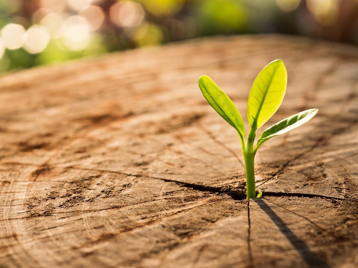 人生是無法左右只能創新改變