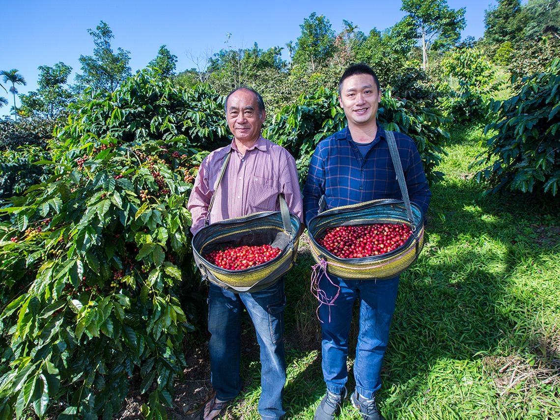 日本高人氣咖啡館聞香找進阿里山 這對父子的「飄茶香」咖啡豆接單接不完
