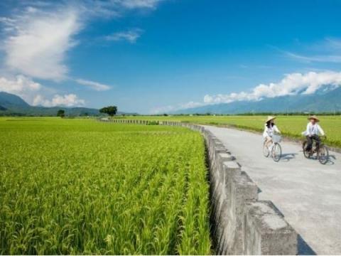 去花東騎單車有多好玩?馬來西亞人半年就來了6、7次!退休後隨時都能快樂小旅行