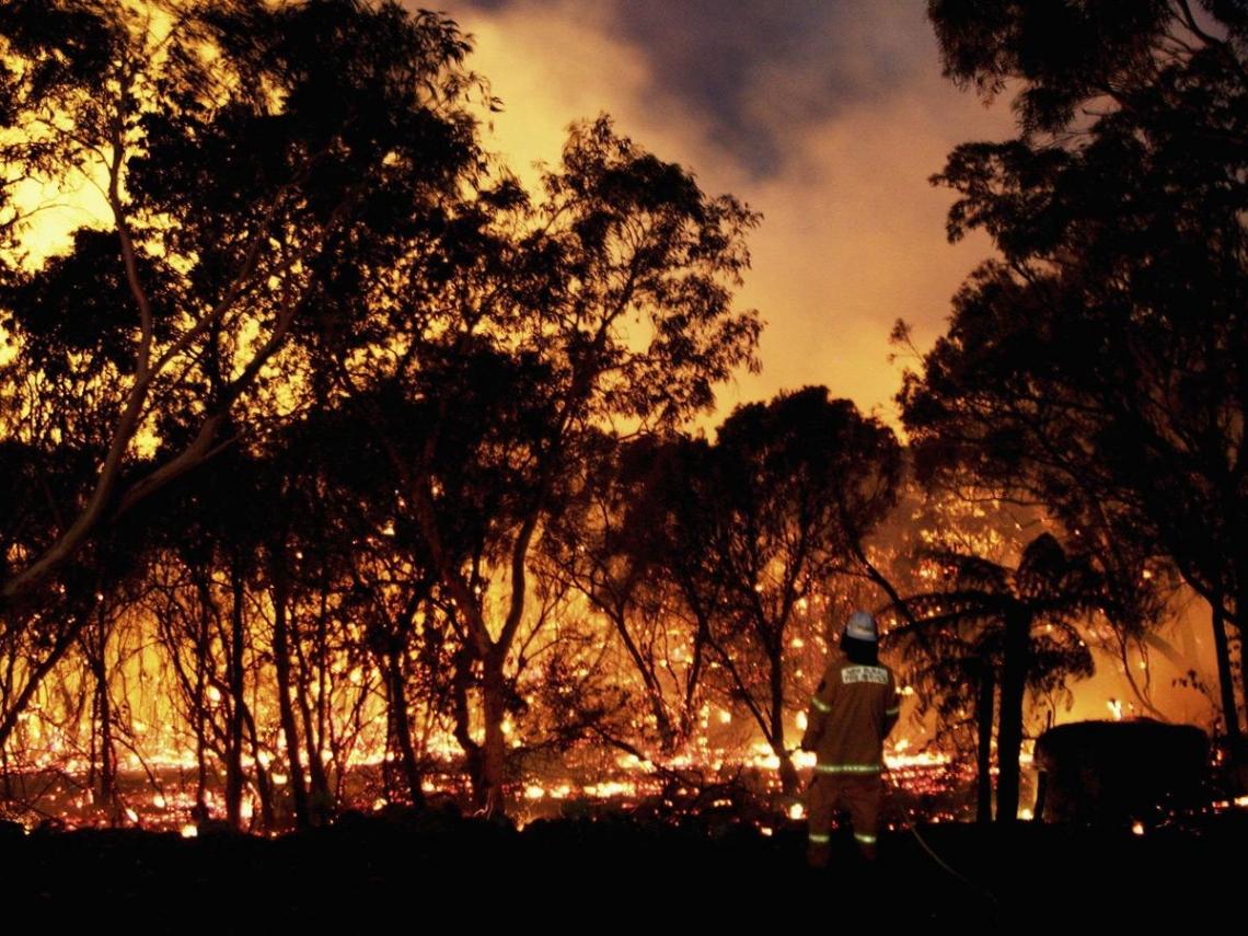 澳洲大火延燒120天、燒掉3個台灣,總理卻在度假?一文看透澳洲經濟與政治大洞
