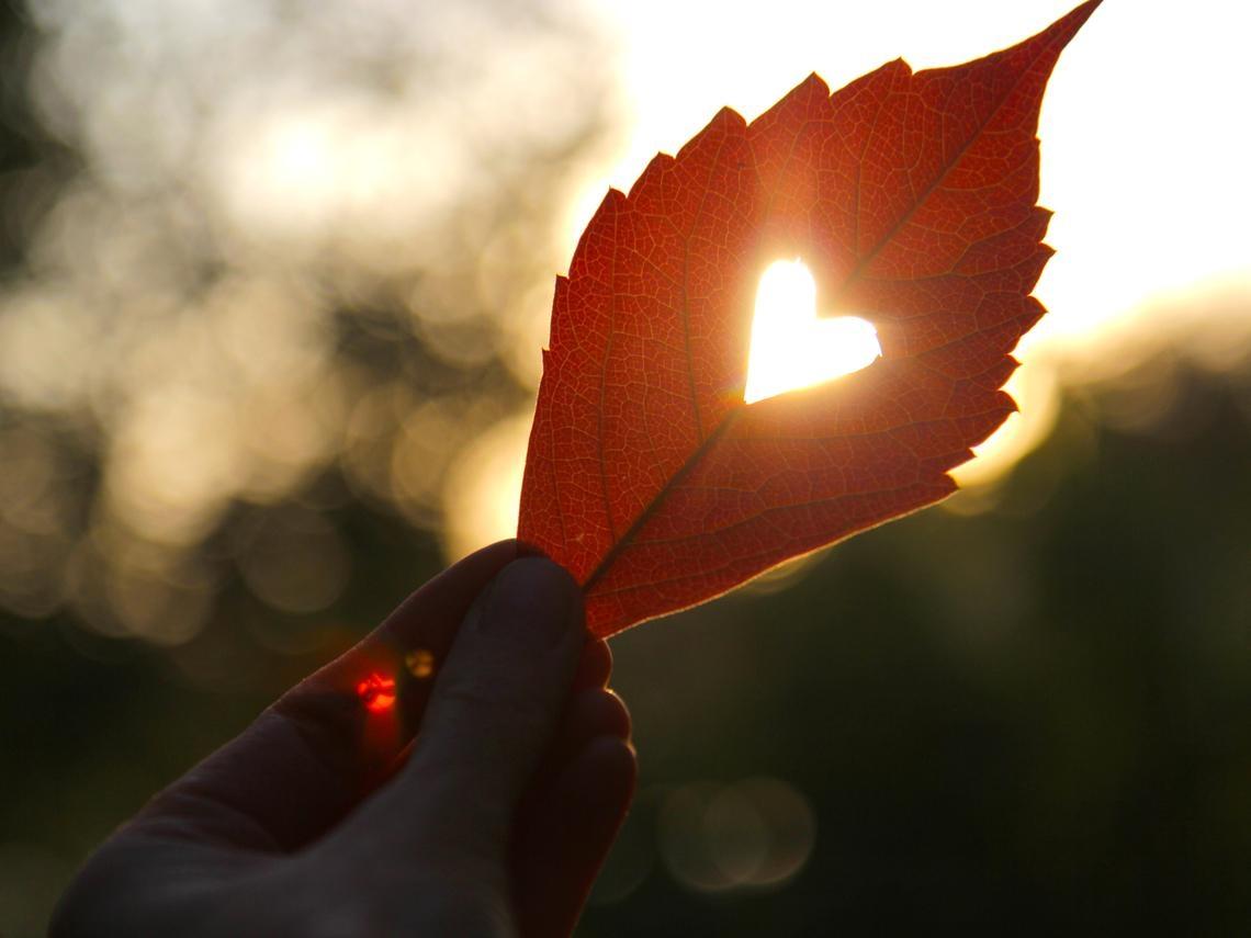 改變命運的秘密是藏在心中