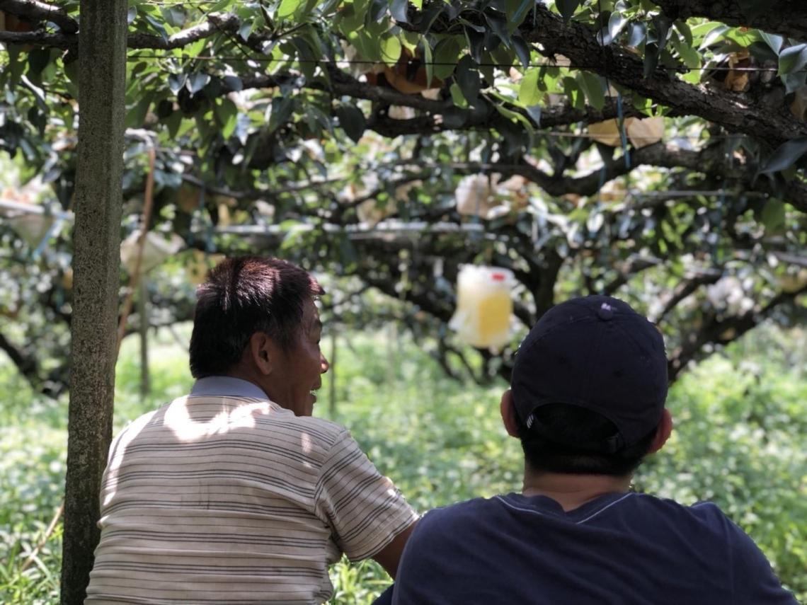 沒了小學就沒了社區活力  大梨救小校--「雙連梨」農創社企活化卓蘭新生命