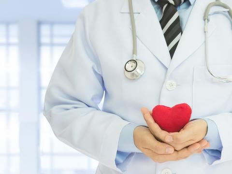 醫師帶您一分鐘搞懂L-精胺酸功效、作用 調節血脂的保健品怎麼挑