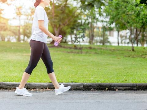 大便常黏在馬桶小心罹「癌症」?濕熱體質不調理,小心損害腸胃、釀發炎,致癌率增加