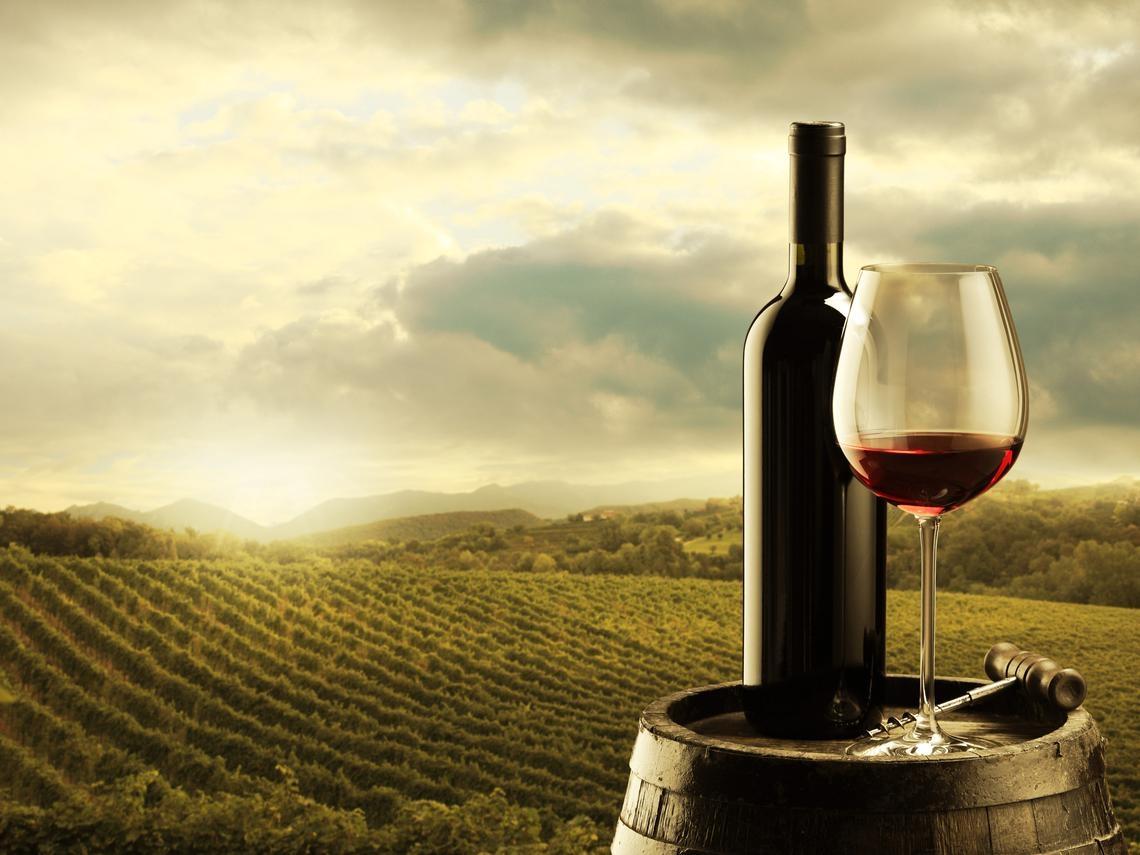 美國葡萄酒鄉納帕谷  風光不再