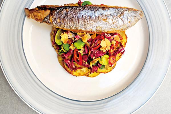 Mediterranean Culinary Academy