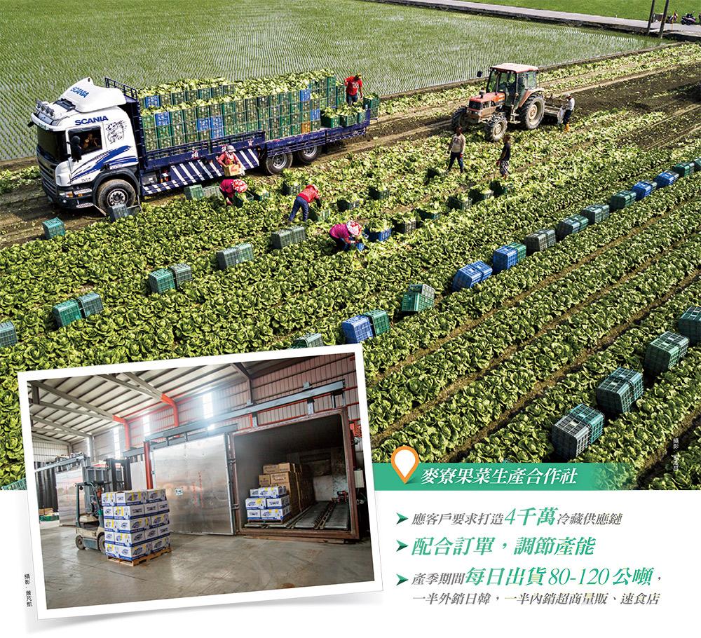 麥寮果菜生產合作社