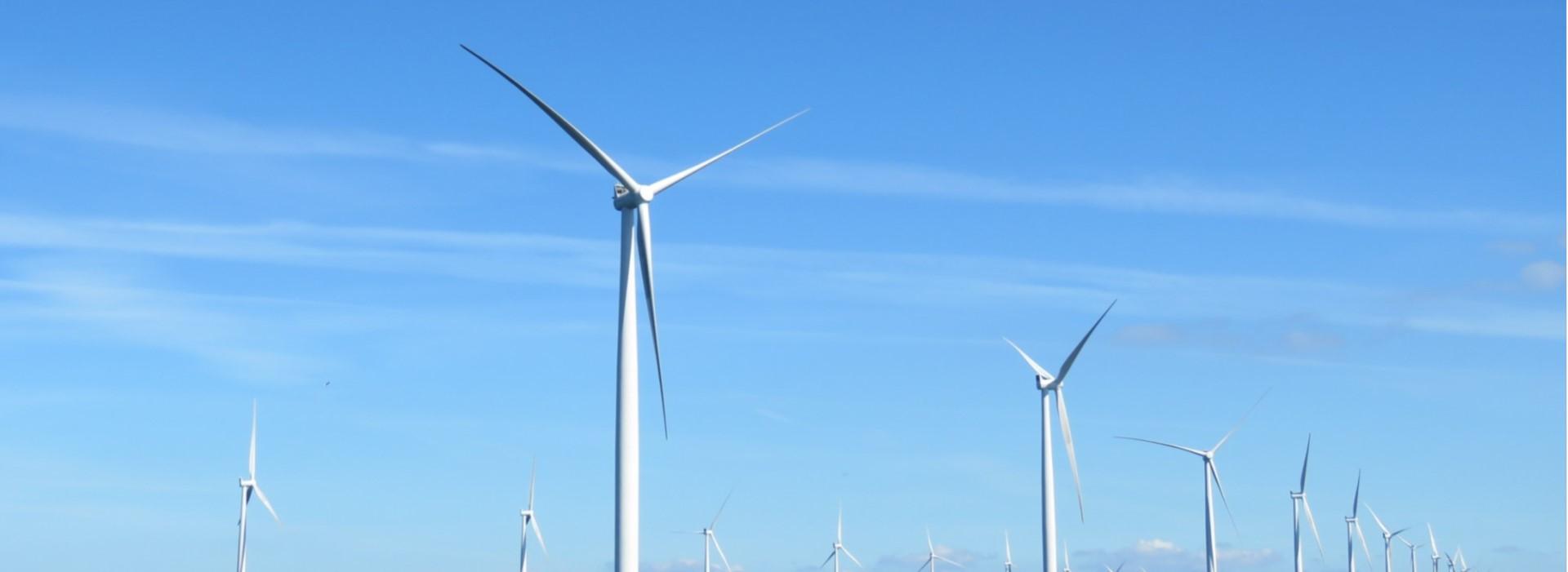 綠色經濟正起飛 離岸風電成新秀