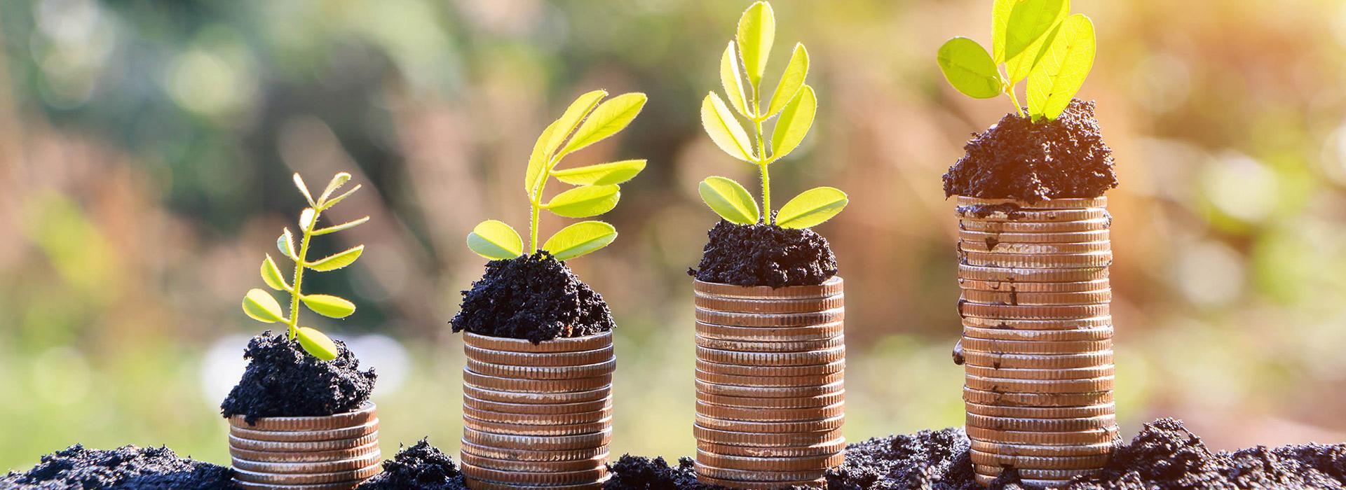 談投資理財 別小看複利的力量