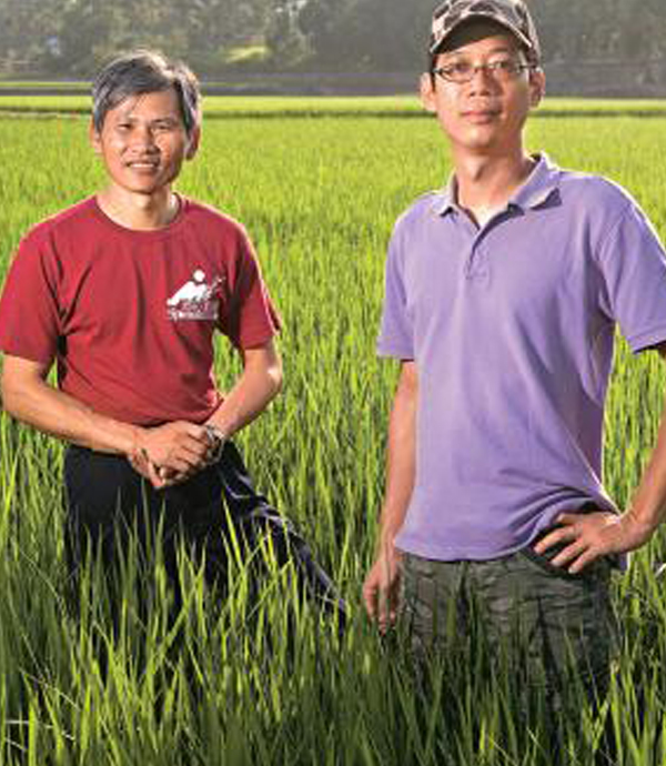 親耕兩分田  打造有機米直購新模式
