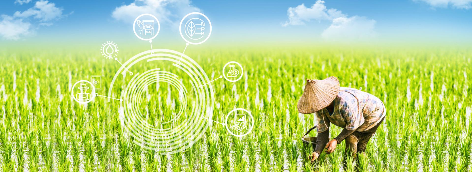 以科技突破台灣農業挑戰