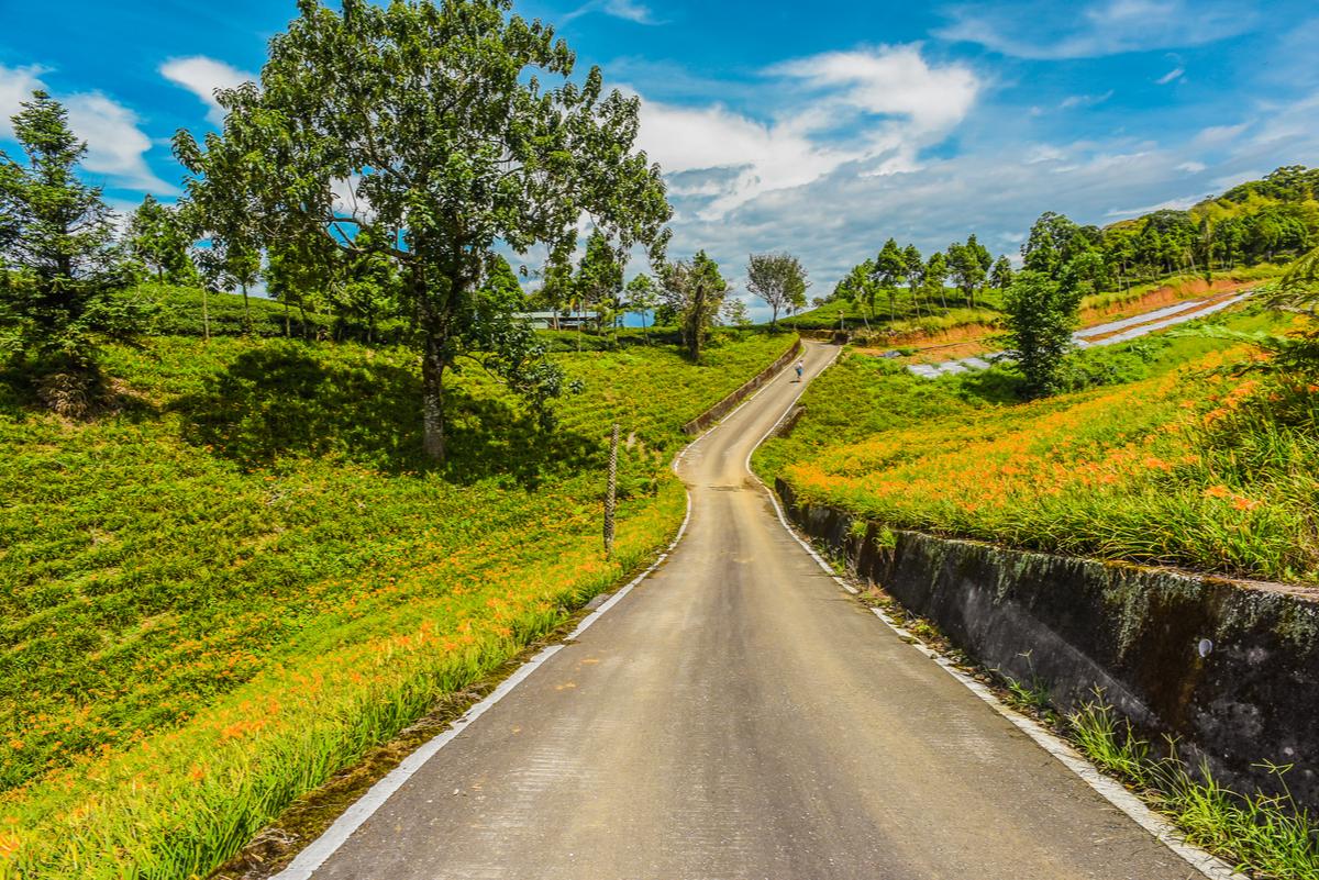 如鬼魂般漂泊110公里,全台灣最長的「千里步道」:縣道一九三號