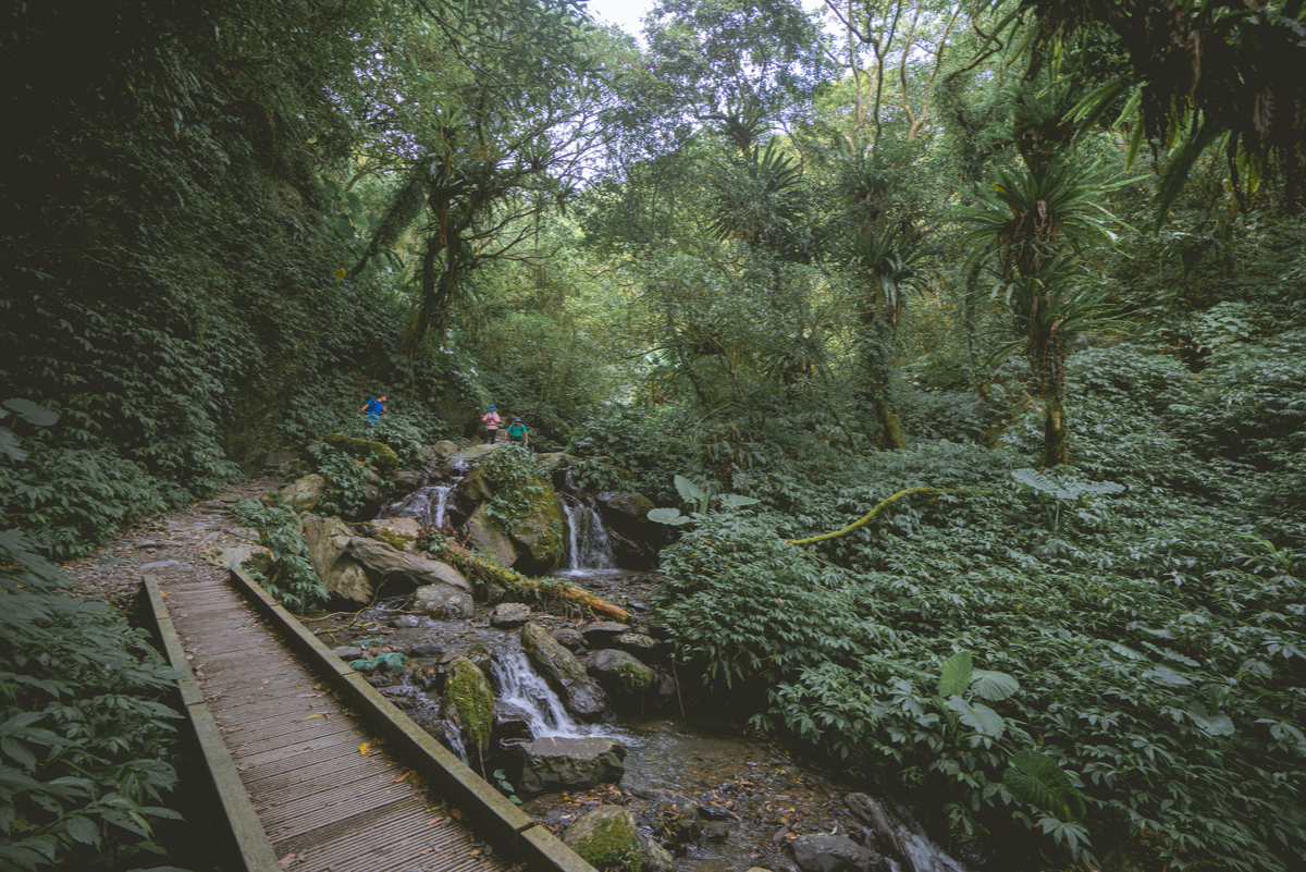 溫泉之鄉裡的清幽仙境,和淡蘭古道最完美的結合:礁溪跑馬古道