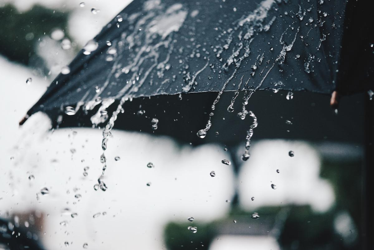 生命遭逢風雨,試著把自己變成一把「雨傘」,你將看見希望