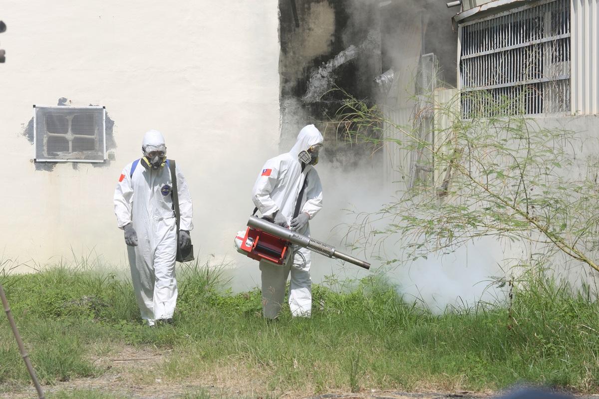 登革熱疫情升溫!台南新增2起本土登革熱病例 去過這些地方要小心