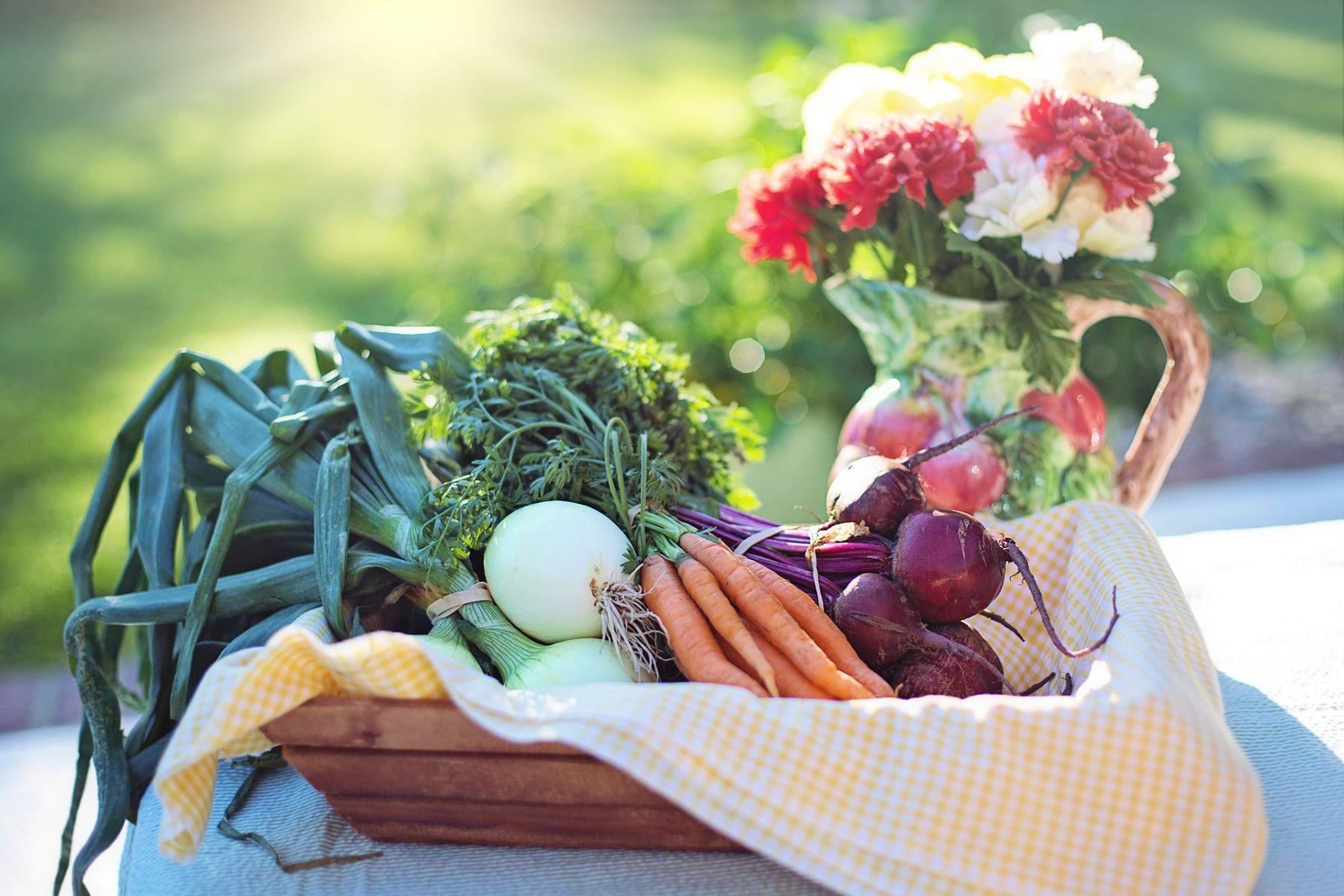 一天只要吃2.5餐 十個有益長壽的飲食原則