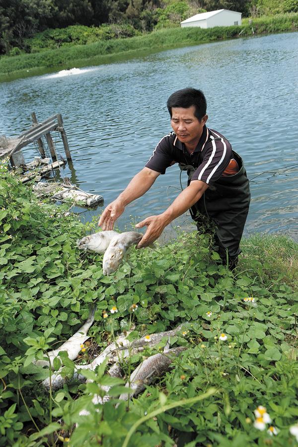 漁民陳孟仙