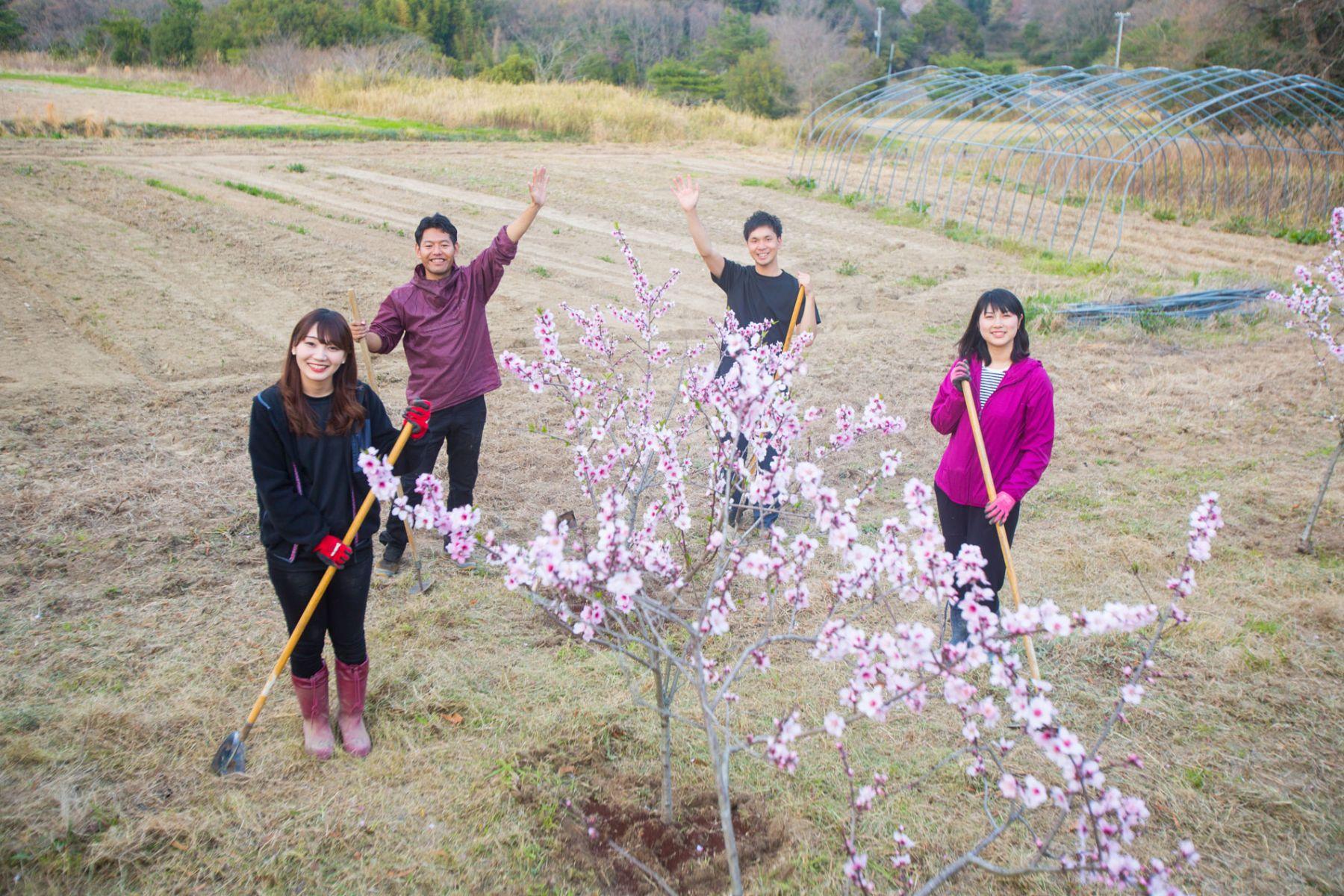 不只有東京能打拼! 日本高齡小鎮讓森林、古宅變身「小矽谷」
