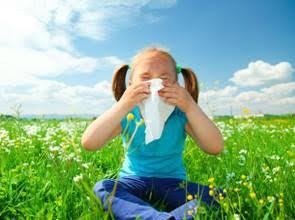 春天過敏大發作 吃益生菌改善有用嗎?