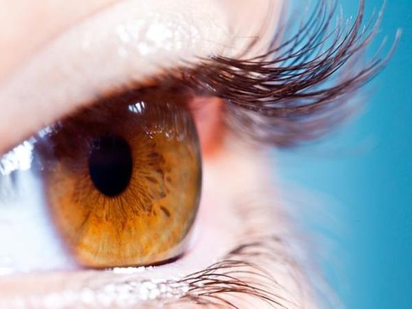 眼睛癢不要揉 以免細菌性結膜炎上身