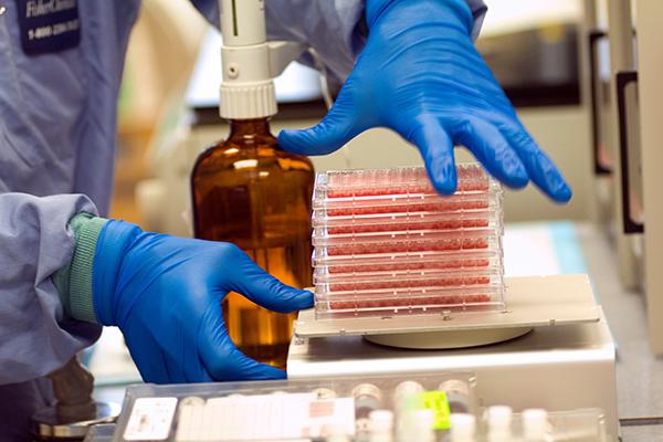 人體組織得來不易 器官保存挽救八仙塵爆傷者