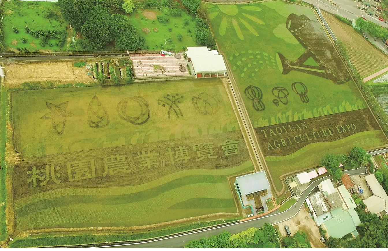 2017桃園農業博覽會 一天玩不完