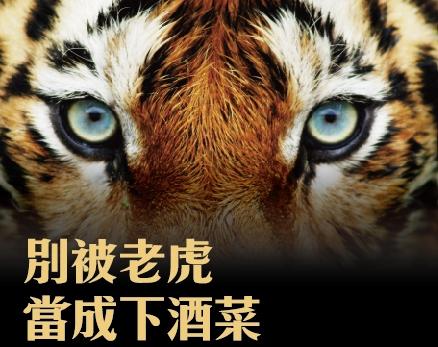 每天做點嚇人的事,打敗心中的老虎!