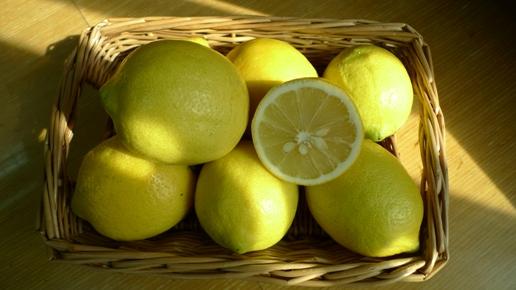 沿著等高線種檸檬