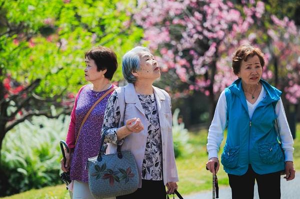 7人中有1個是老人 台灣上月底起邁入高齡社會
