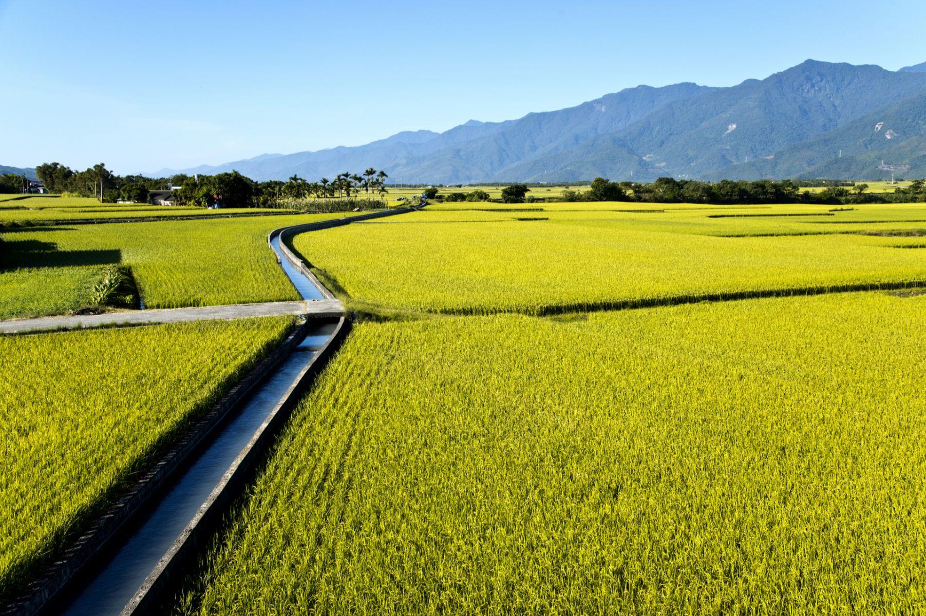 台灣東部資源不足是劣勢?北歐偏鄉這樣做長照