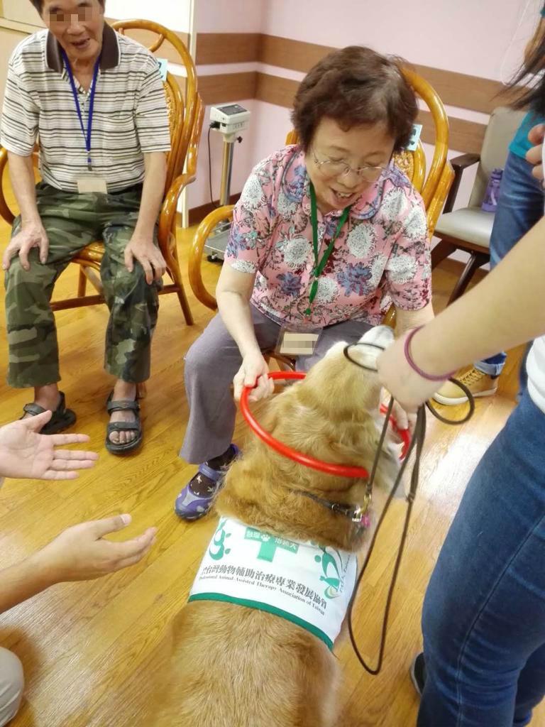 參加寵物治療,唐媽媽與狗兒互動好開心
