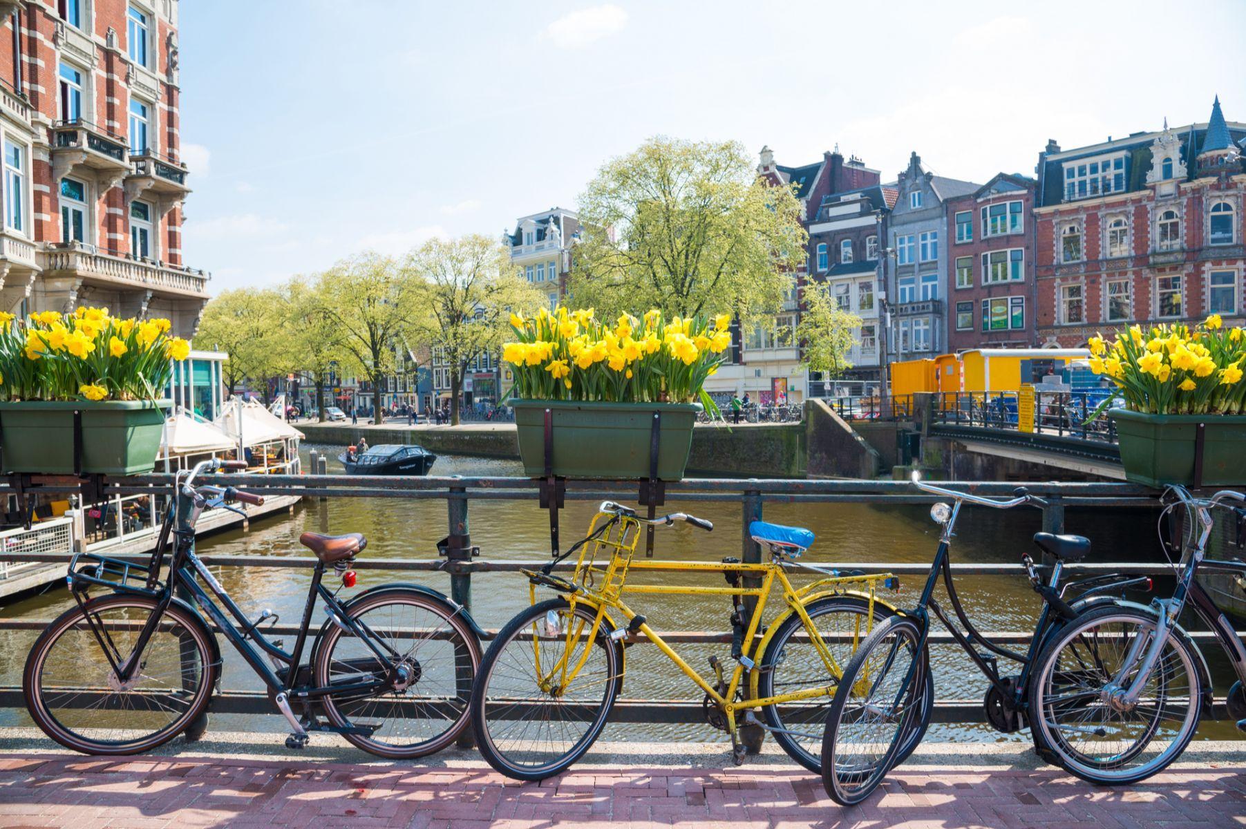 騎腳踏車趴趴走、海邊散步喝咖啡!荷蘭人快樂退休的秘密