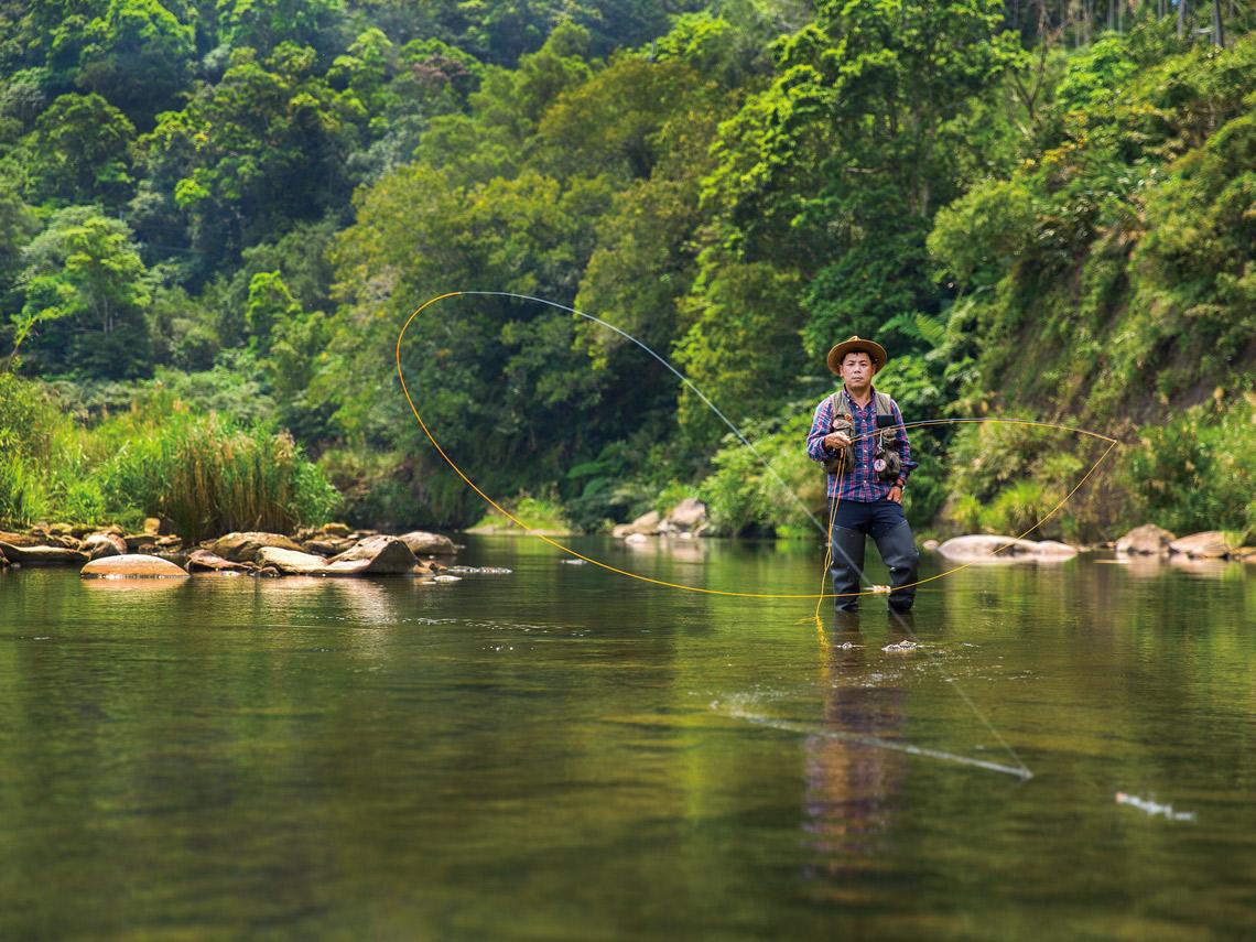 新北坪林溪釣飛釣溪哥